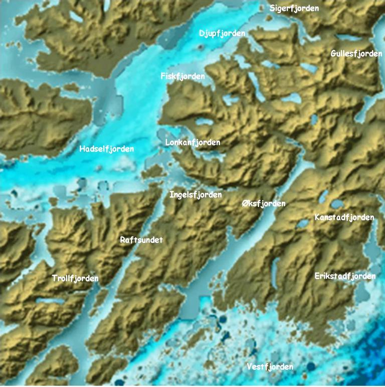 Fjordene